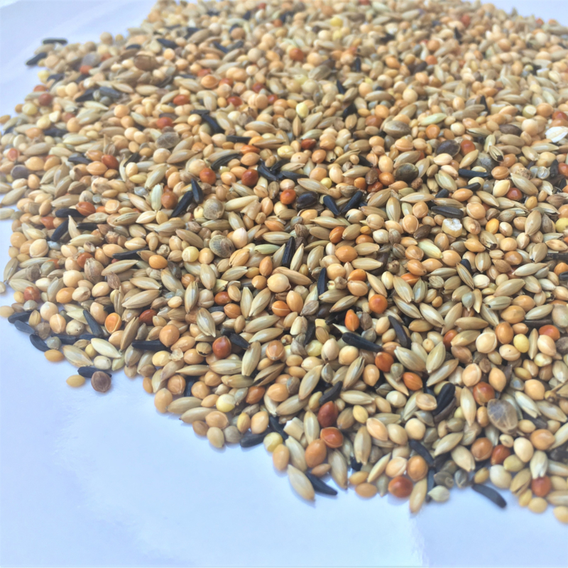 Van Hout tropisch zaad Nr. 2,  5 kg