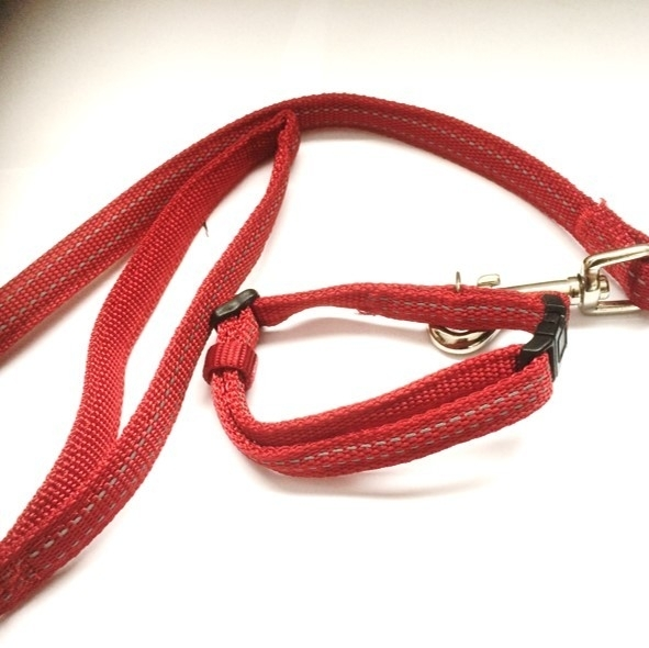 NYC setje hondenriem met halsband 'Reflect' rood
