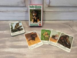 Baby dieren kwartet