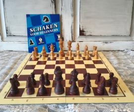 Avro schaak cursus