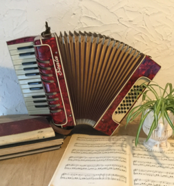Vintage accordeon Scala