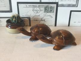 Teak houten schildpadjes