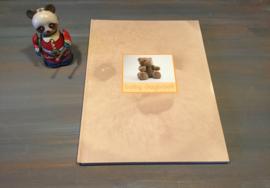 Baby dagboek (nieuw)