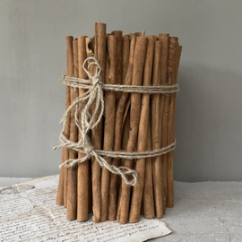 OV20110762 Large bundle of scented cinnamon sticks for decorative use. Size: 20 cm. high / +/- 16 cm. cross section