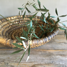 OV20110667 Old French olive harvest basket of woven straw in weathered, but beautiful condition! Size: 12 cm. high / 44.5 cm. cross section.