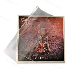 100 Stück - Blake Sleeves - LP Schutzhüllen mit Klappe, Dicke 0.05 mm.