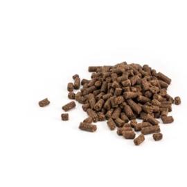 Darf Bites - Vol voeding zalm