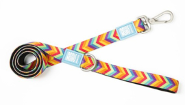 Max & Molly Short Leash - Summertime