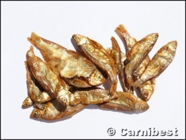 Carnibest Gedroogde visjes 50 gr/zak
