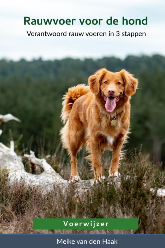 Rauwvoer voor de hond - Meike van den Haak (Voerwijzer)