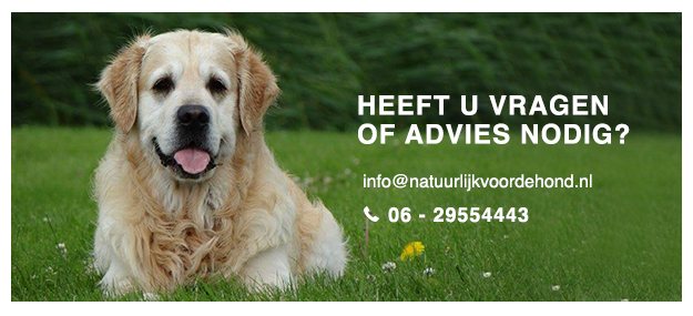 Advies of vragen over natuurlijke hondenproducten? | Natuurlijk voor de Hond