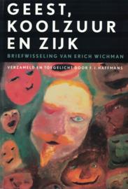 Geest, koolzuur en zijk - Briefwisseling van Erich Wichman