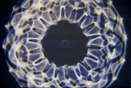 16 Cymatic foto  40.02 Hz  op canvas 40 x 60 cm