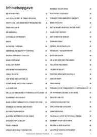 10 GEOMETRISCHE SJABLONEN - Werkboek van Lisa Borstlap - full colour - 64 blzd.