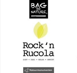 Kweeksetje Rucola (Bio)
