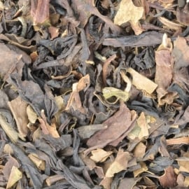 Oolong Thee Premium