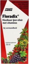 Floradix IJzer Elixir
