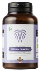 Hericium extract (Bio)