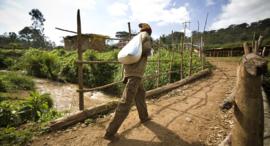 Koffiebonen Premium Ethiopie (Bio)