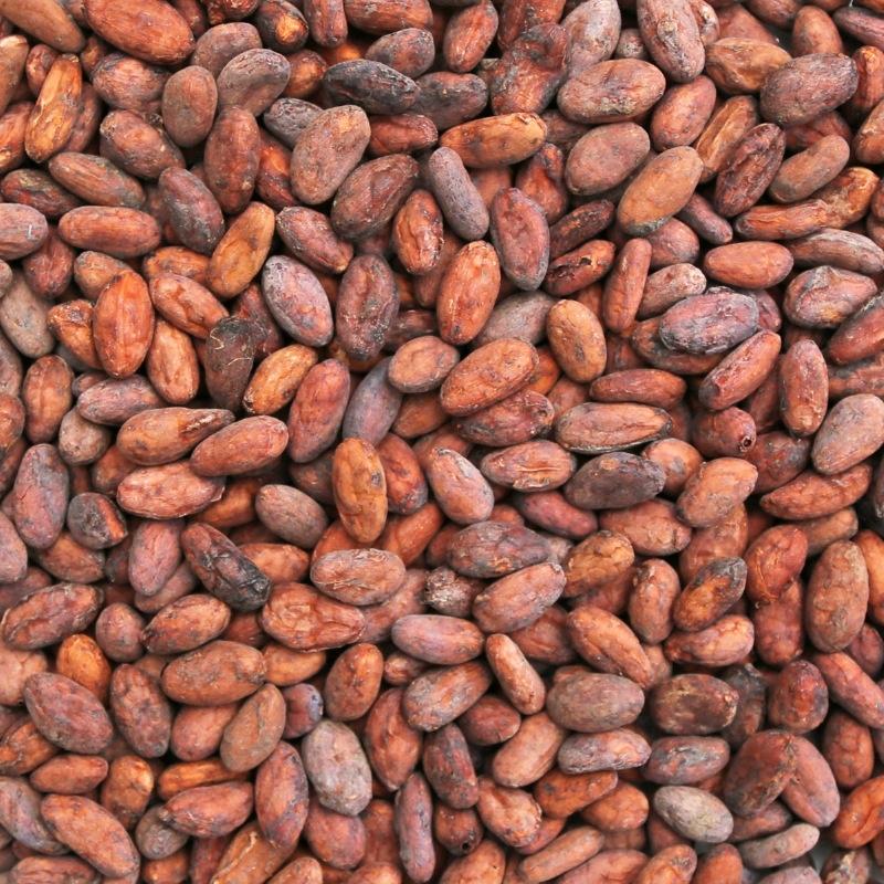 Cacao Bonen (Bio)