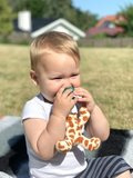 Little Arthur - Baby Giraffe