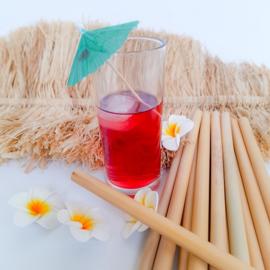 Herbruikbare Rietjes van bamboe (set van 12 stuks & rager)