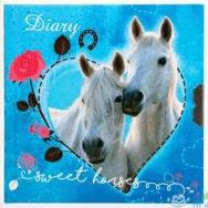 Dagboek Sweet Horses