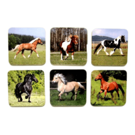 Onderzetterset Paarden