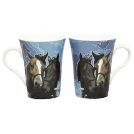 Cadeauset Paardenmokken
