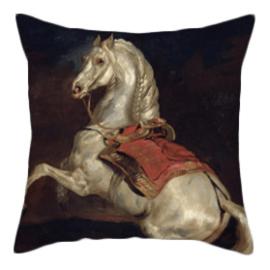 Kussenhoes Paard