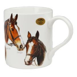 Mok Racepaarden