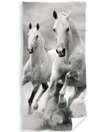Strandlaken Paard.