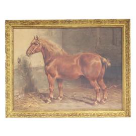 Suffolk horse Eerelman