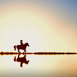 """Blog 10: """"Bucketlist voor paardenmeisjes"""""""