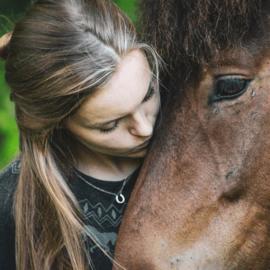 Paarden Ketting Hoefijzer Zirkonia Steentjes