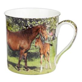 Paarden Mokkenset