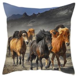 Kussen Wilde Paarden