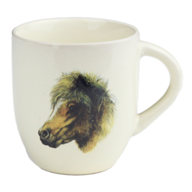 Shetlander Pony Mok Klein