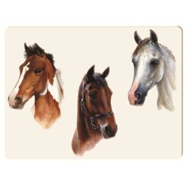 Werkblad Portret 3 Paarden