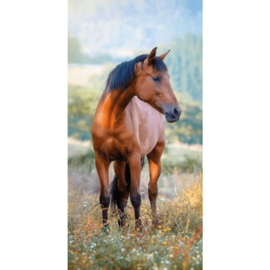 Strandlaken Bruin Paard 140x70