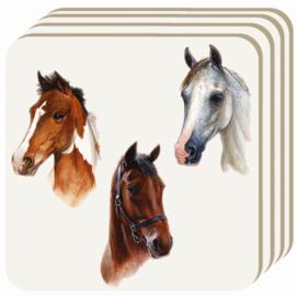 Onderzetterset Paarden Portret
