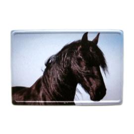 Magneet Metaal Fries Paardenhoofd