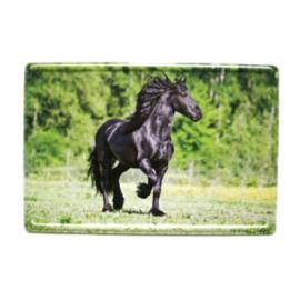 Magneet Metaal Fries Paard