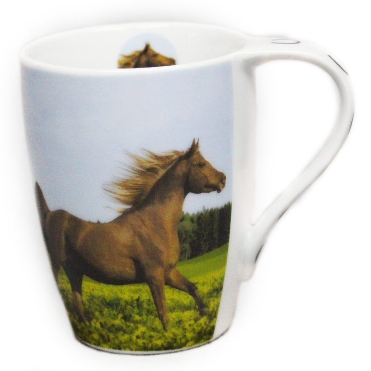 Paardenmok