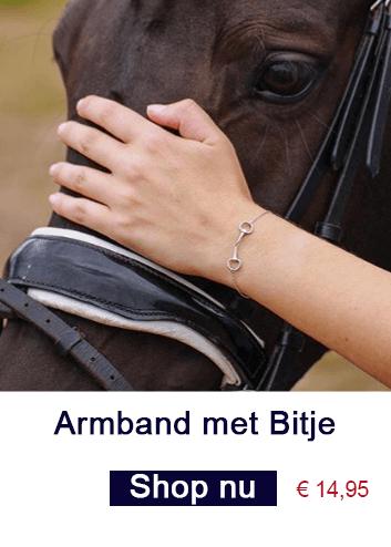 Armband met bitje
