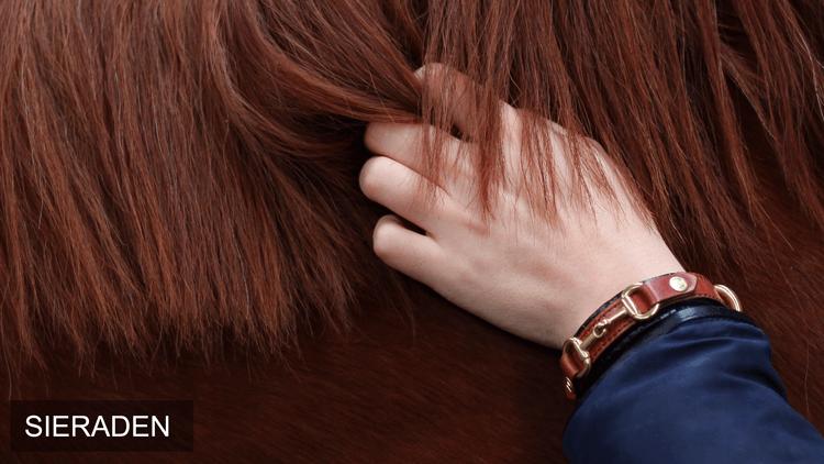 paarden sieraden