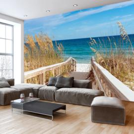Strandpad Duinen Zee nr 392