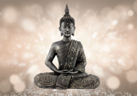 Buddha nr 169