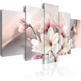 241 Magnolia Bloemen