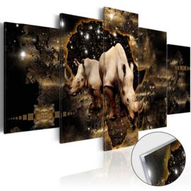 2 Neushoorn Afrika Acrylglas Schilderij
